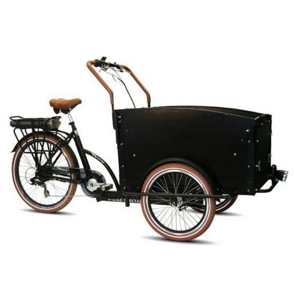 triporteur electrique troy bikes troy jusqu 39 4 enfants. Black Bedroom Furniture Sets. Home Design Ideas