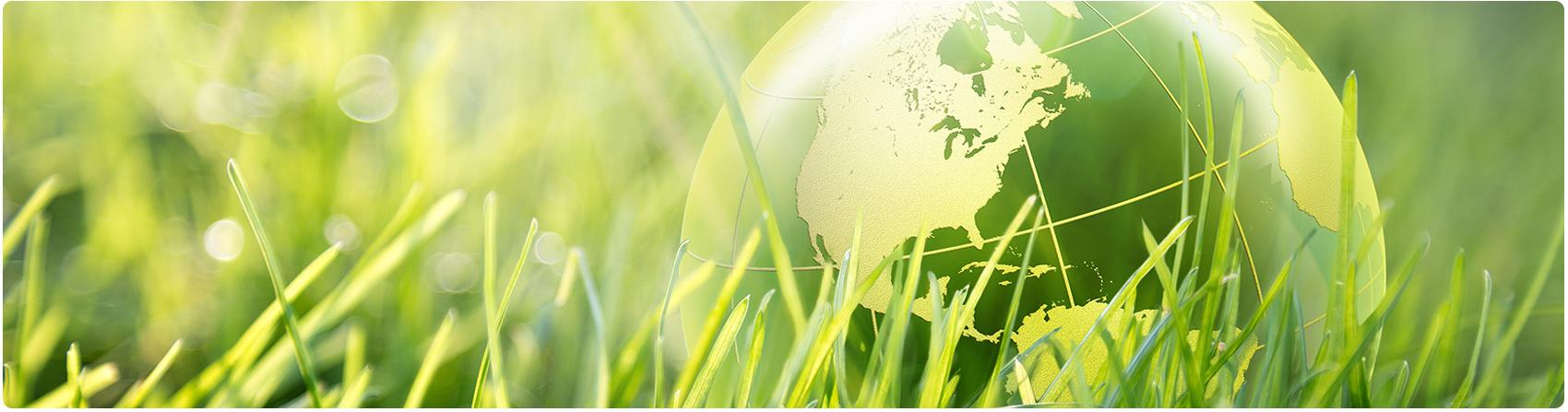 L'environnement et Greenmarks