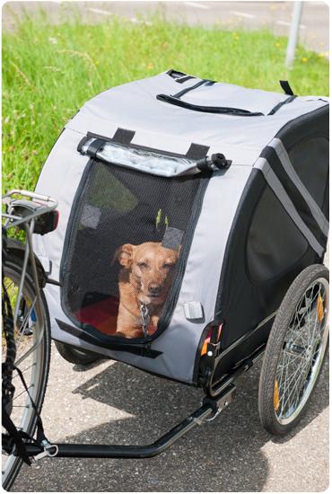 Découvrez nos remorques vélos pour animaux