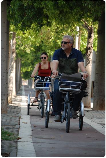 Découvrez les tricycles adultes Greenmarks.
