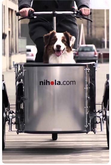 Baladez votre chien avec le triporteur Greenmarks