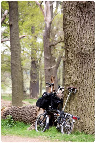 Profitez du grand air grâce aux vélos pliants Greenmarks.