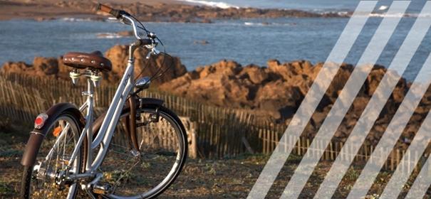 Vélos Arcade assemblé en France