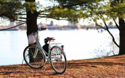 Panier vélo : Lequel choisir ?